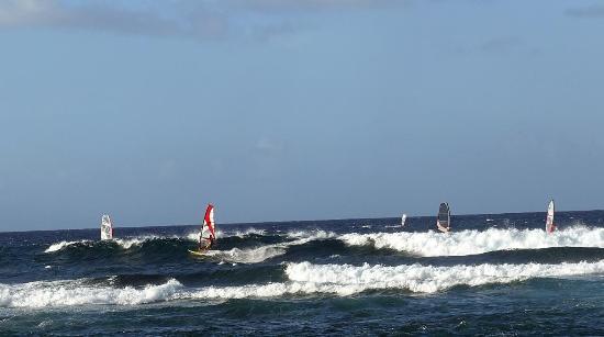 Пайя, Гавайи: Windsurfer in den Wellen
