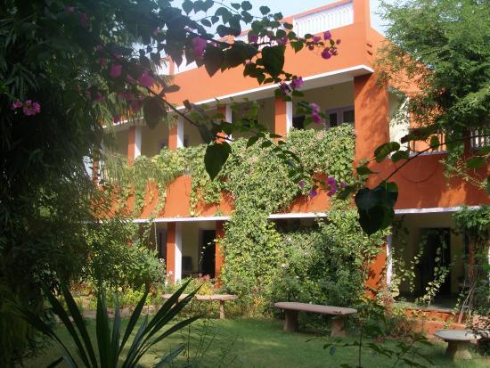 Jungle Lodge : Hotel