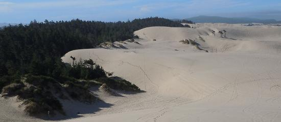 Oregon Dunes at Jessie M. Honeyman State Park near Florence