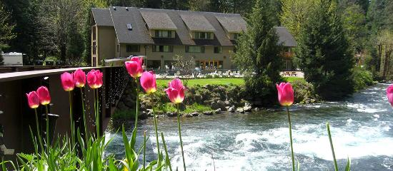 Belknap Hot Springs Resort, McKenzie Bridge