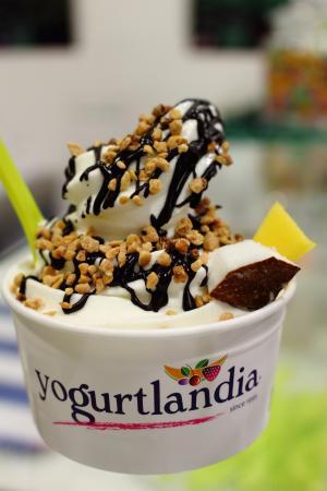 Yogurtlandia Bologna