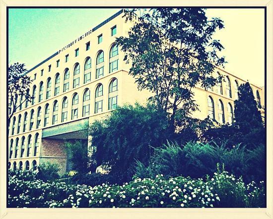 Grand Court Hotel: Гранд Курт