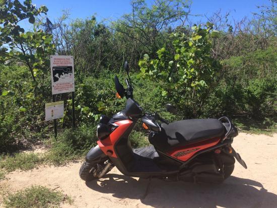 Acacia Guesthouse: photo6.jpg