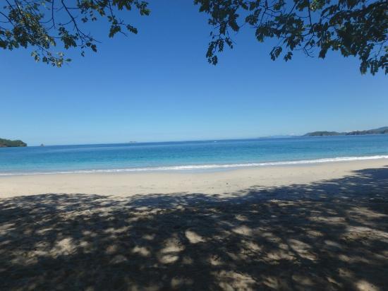 Playa Conchal: PC020422_large.jpg