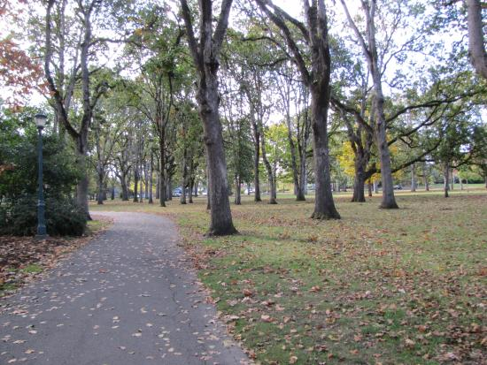Bush's Pasture Park : Park in October.