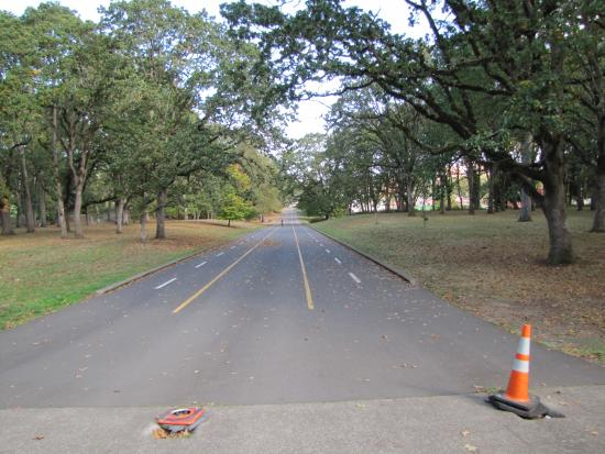 Bush's Pasture Park : Soap Box Derby track at park, Williamette University stadium to the right at bottom of hill.