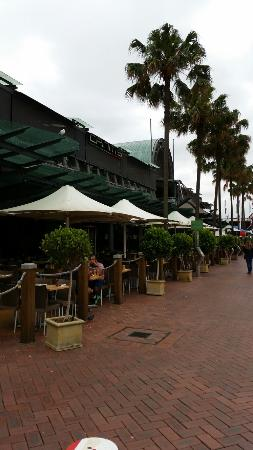 Criniti's Darling Harbour: Restaurant на Darling  Harbor