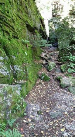 Panama, estado de Nueva York: every where you look, luscious green and cool rock formation...