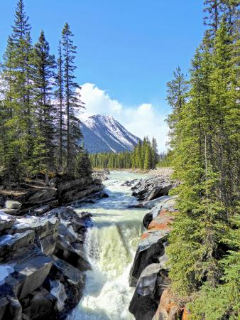 bing maps review with Locationphotodirectlink G499138 D7336492 I162376125 Numa Falls Kootenay National Park British Columbia on Foggintor Wild C ing Ondartmoor likewise Best Seats In Lg Arena as well 538949 Map Hagia further Earthquake 35 Quake Strikes Near Hayfork California Pe2isr as well Search.