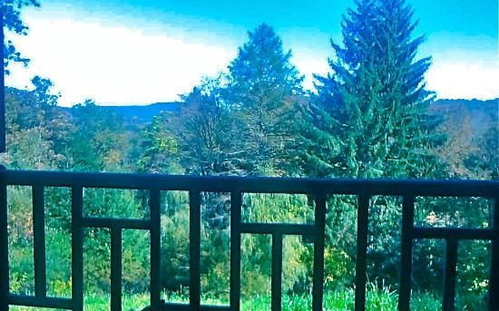 Fleischmanns, NY: View from the Porch