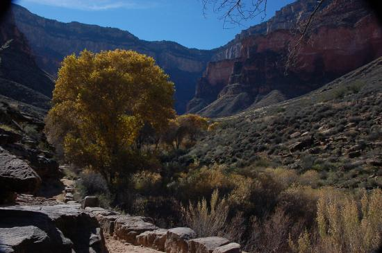 Phantom Ranch : Looking back up to south rim from Bright Angel trail near Indian Gardens