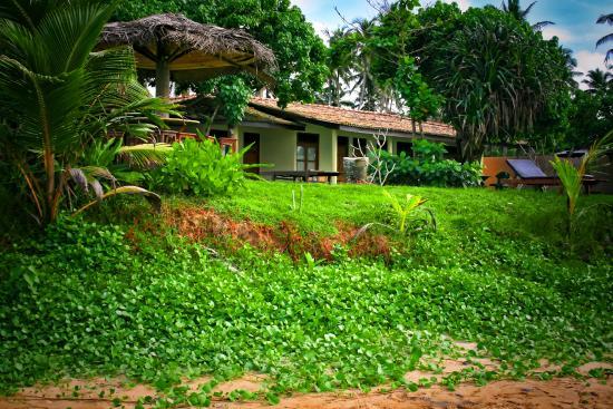 Timeless Villa