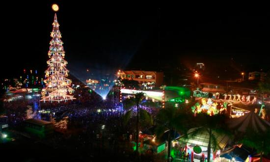 Freedom Park: Giant Christmas Tree