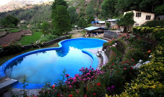 Swimming pool picture of brentwood 39 s sanctuary - Mussoorie hotels with swimming pool ...
