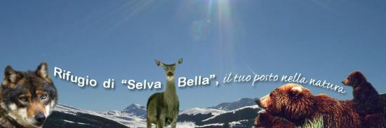 Rifugio Selva Bella照片