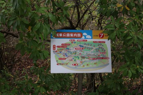 Jomine Park: 城峯公園