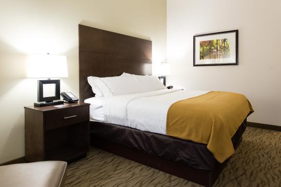 Aiken, Karolina Południowa: King Bed Guest Room