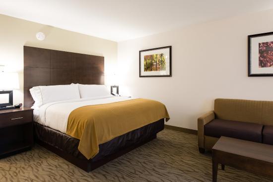 Aiken, Karolina Południowa: Junior Suite Guest Room with King Bed