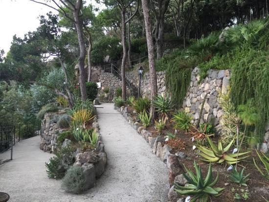 Giardini la mortella picture of giardini la mortella forio tripadvisor - Giardino la mortella ...