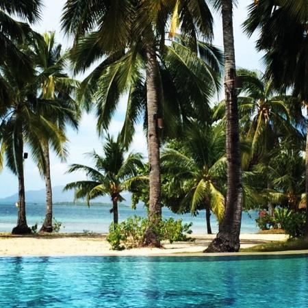 Dos Palmas Island Resort & Spa: Poolside infinity pool