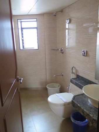 Hotel Ashray International: the shower and toilet