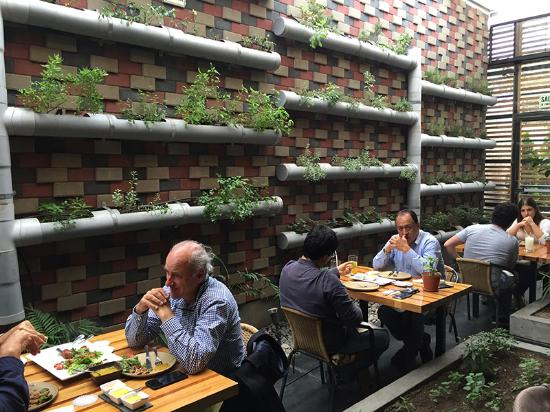 Nanka La Molina: Vertical Herb Garden Made With Recycled PVC Pipes