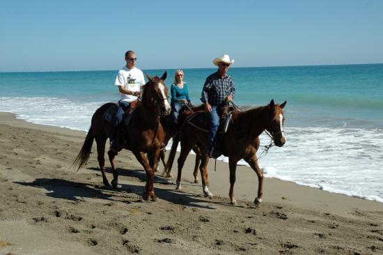 Juno Beach, FL: Horseback Riding on the Beach