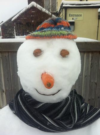 Farrington Gurney, UK: Snow in 2015?