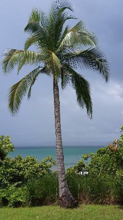 Punta Bejuco, Panamá: vue chambre