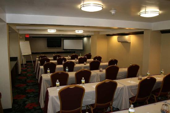 Jericho, NY: Meeting Room