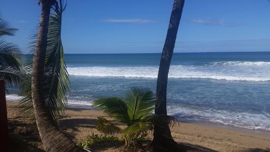 Casa Islena Inn: view of beach from casa islena pool deck