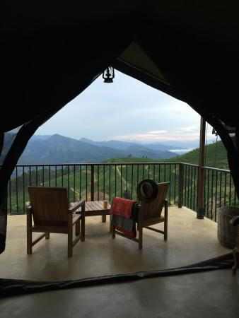 Madulkelle Tea and Eco Lodge: View from Double Room Tent