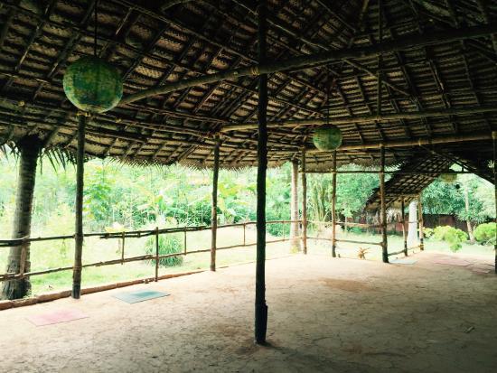 Sharanagati Yogahaus : Yoga Hall