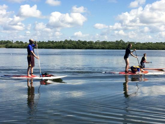Paddleboard Adventures