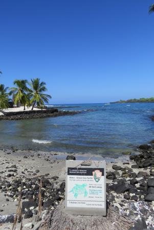 Honaunau, Hawái: Turtle Cove