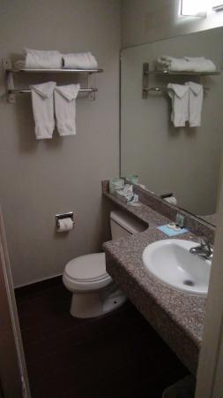 Rodeway Inn Los Angeles: Ванная комната