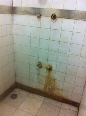 Safari Inn: douche horrible