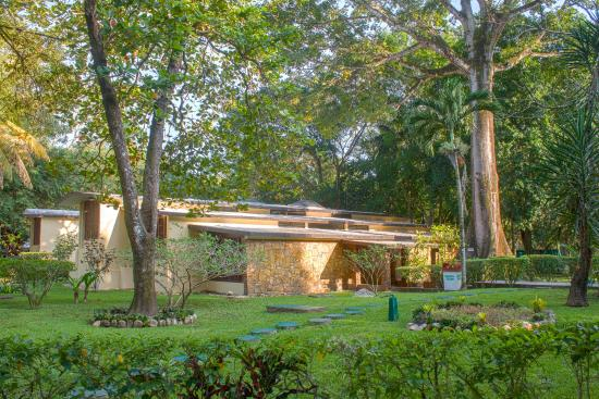 Hotel Nututun Palenque: EDIFICIO DE ESTÁNDAR