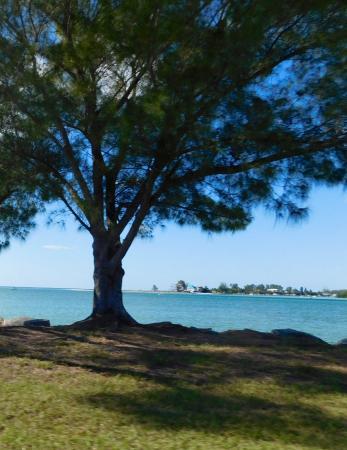 Boca Grande, FL: The approach