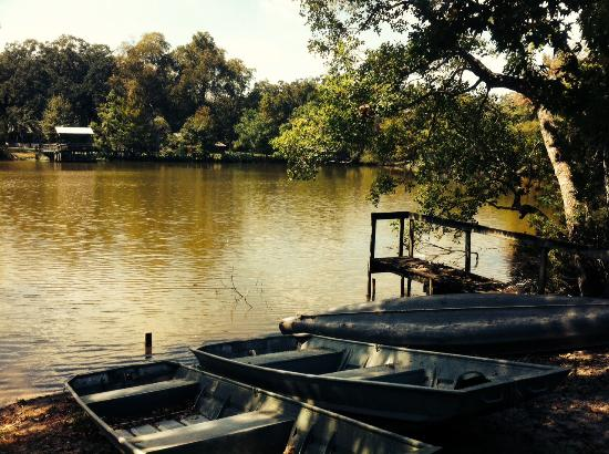 Cajun Country Cottages Bed and Breakfast: Canoes and boats up for grabs!