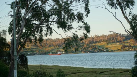 Pastimes : Tamar River