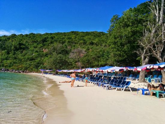 วันพ่อพาพ่อเที่ยวเกาะล้านครับ - Picture of Koh Lan (Coral Island), Pattaya - ...