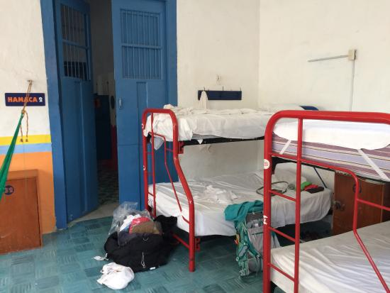 Nomadas Hostel: My bunk in the girl's dorm.