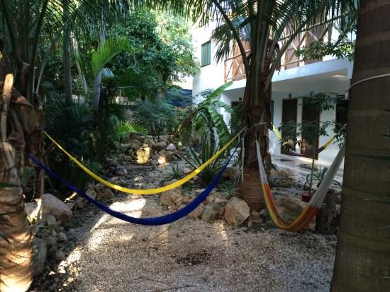Nomadas Hostel: A quiet and peaceful hammock garden area behind the pool.