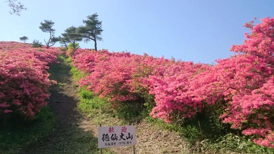 Mt. Tokusenjo: 徳仙丈山