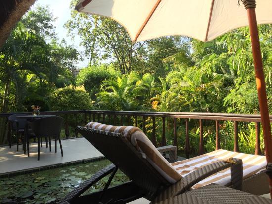 show user reviews carnoustie ayurveda wellness resort mararikulam kerala