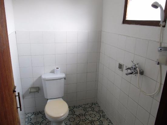 Teba House Ubud Guest House: Łazienka