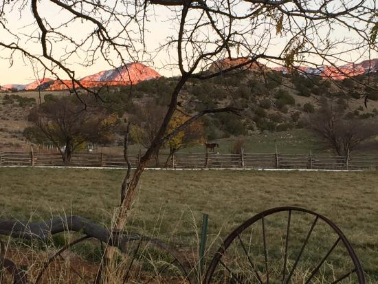 Canyon of the Ancients Guest Ranch: Out the back door
