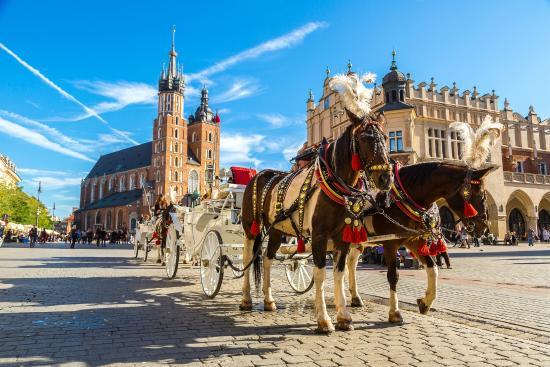 CometoKrakow. com - Tours & Transportation