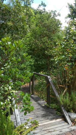Augusta de Mist Country House: garden